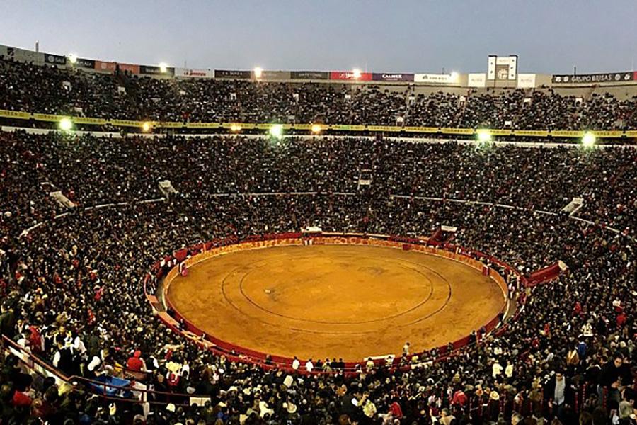 Top 4 des visites à faire lors d'un séjour à Mexico
