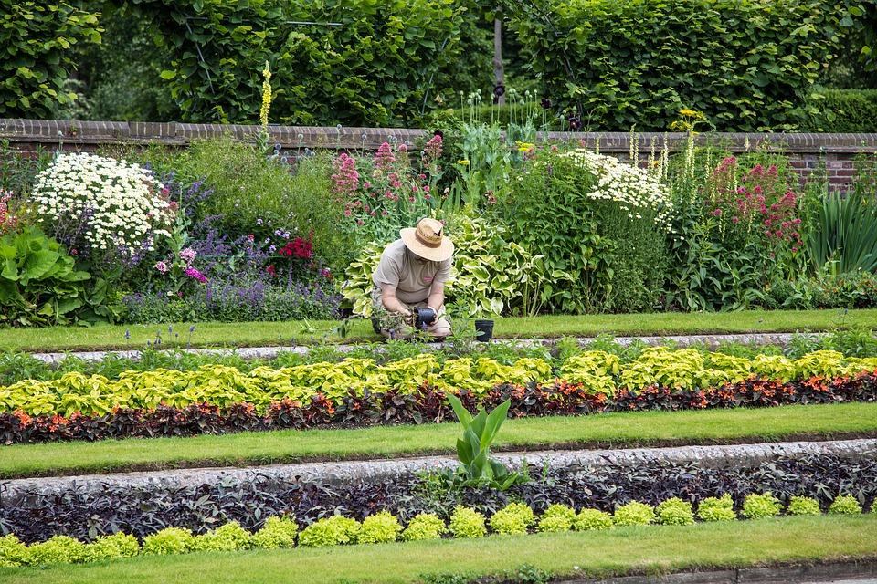 Entretenir votre jardin et réduire vos impôts grâce à un jardinier