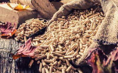 Poêle à granulés offrant un avantage intéressant